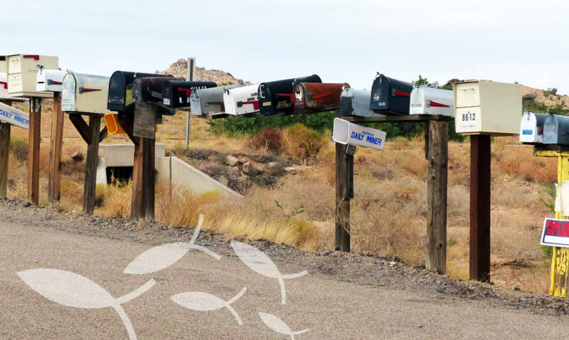 Mail-Adresse mit eigenem Domainnamen – oder doch lieber Freemail?